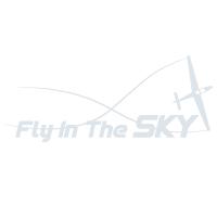 FlyInTheSky logo